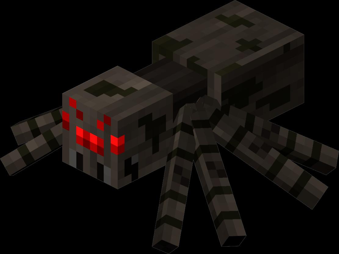 En arg spindel, igår.